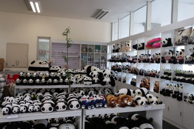 Their panda gift shop...