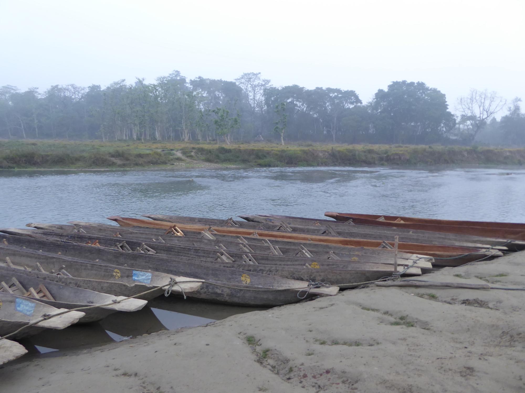 Crocodiles in Dugout Canoes in Chitwan, Nepal – Team Strawberry
